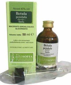 macerato glicerico di Linfa di Betulla verrucosa, Fitosofia